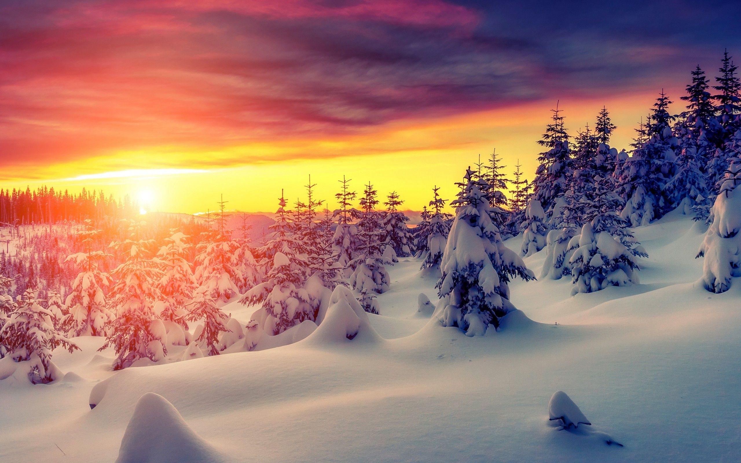 Landscape Photos Sunrise
