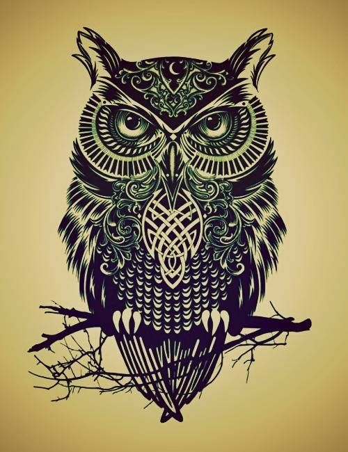 how to draw an owl easy - Google Search