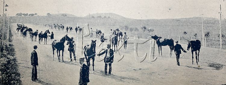 Exposição de cavalos de 2 anos de idade no Jockey Clube do Rio de Janeiro. Atualmente o local é ocupado pelo estádio do Maracanã. 1917.
