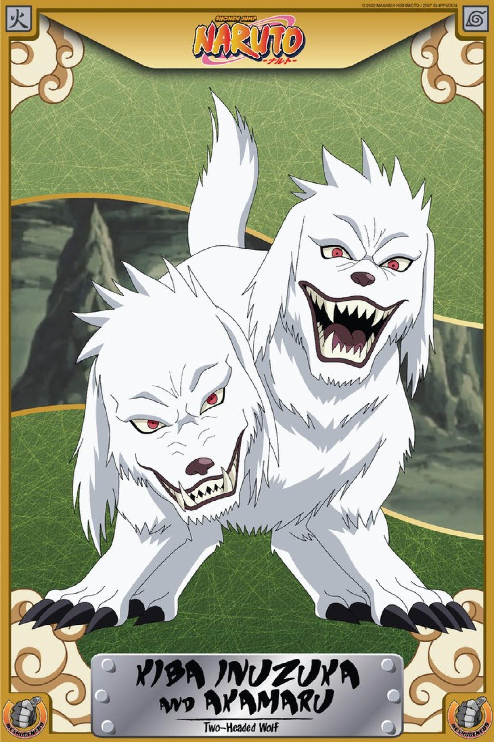 Kiba Inuzuka and Akamaru (Two-Headed Wolf) by meshugene89 ...