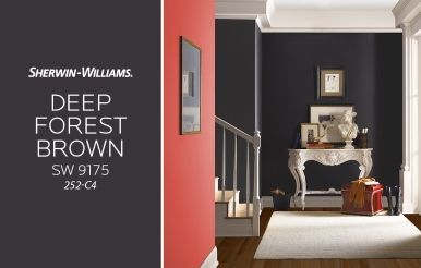 Sherwin Williams Deep Forest Brown Sw 9175 252 C4