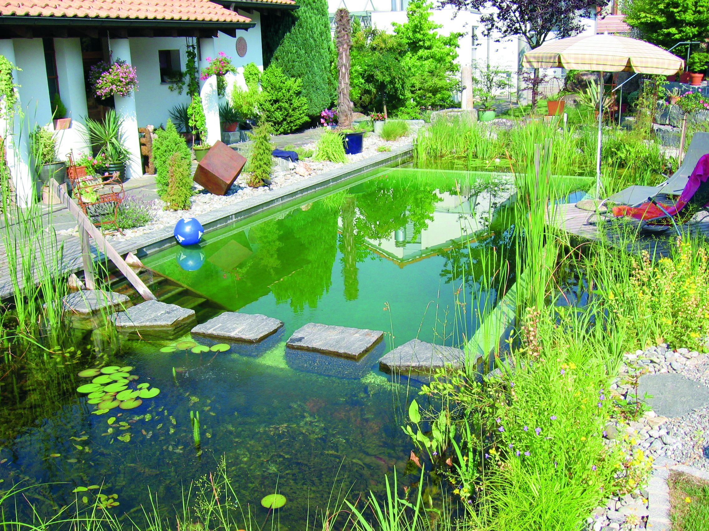 Eco friendly pool designs solar heating and bio filter interior - Natural Pool Stepping Stones Divide Bio Zone From Swimming Pool