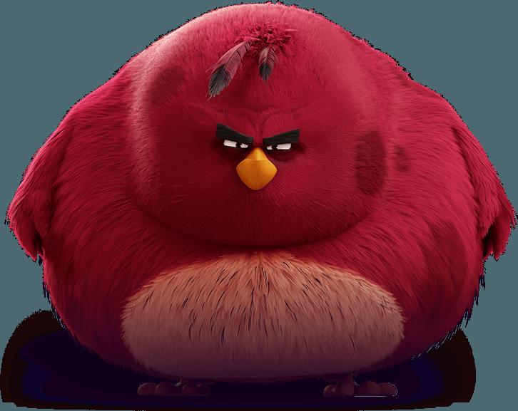 Characters Angry Birds Angry Birds Characters Red Angry Bird Angry Birds