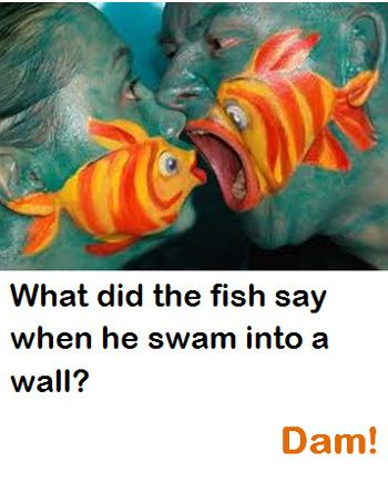 10/22/12 What did the fish say when he swam into a wall