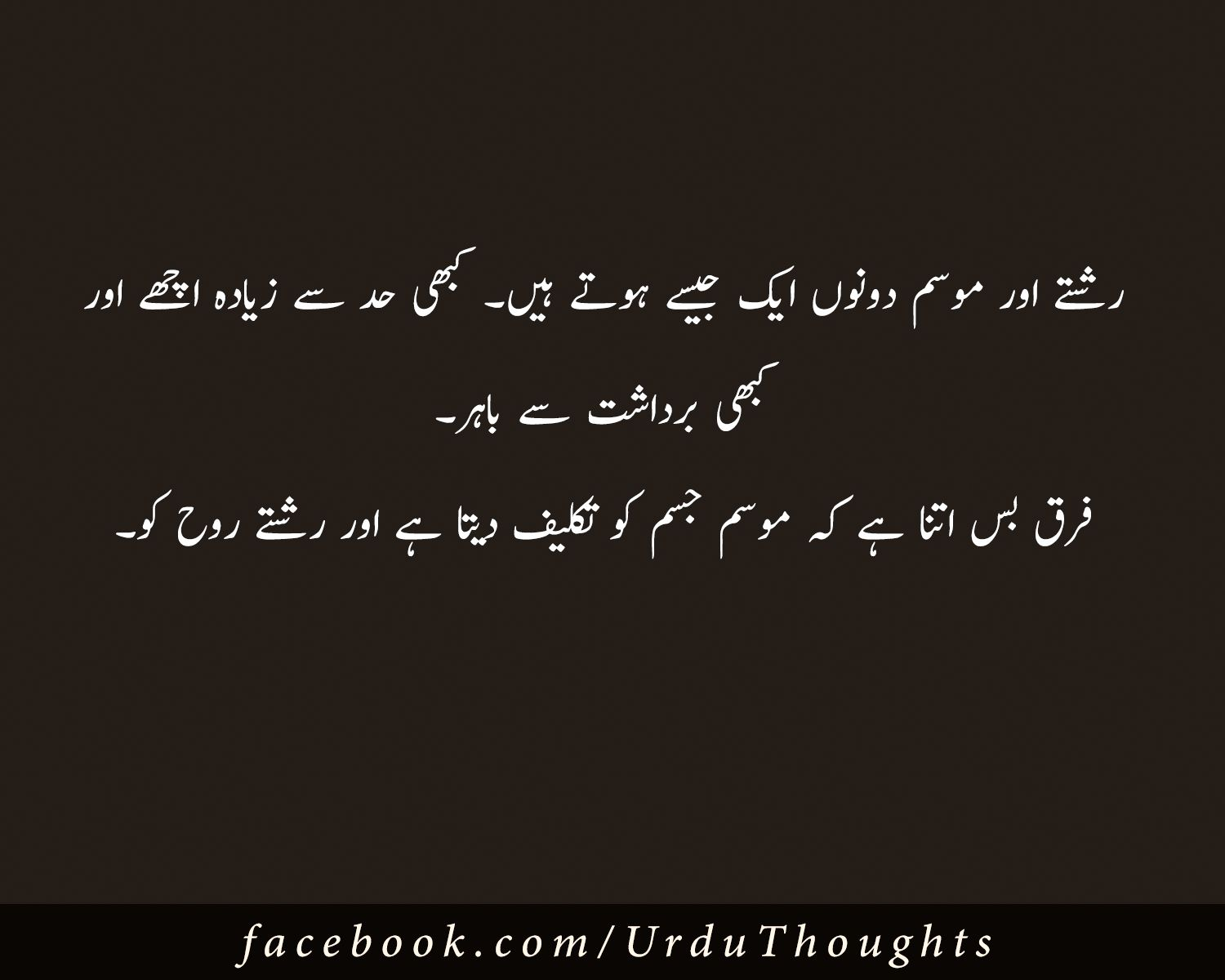 Urdu Thoughts   Urdu thoughts, Amazing quotes, Islamic quotes