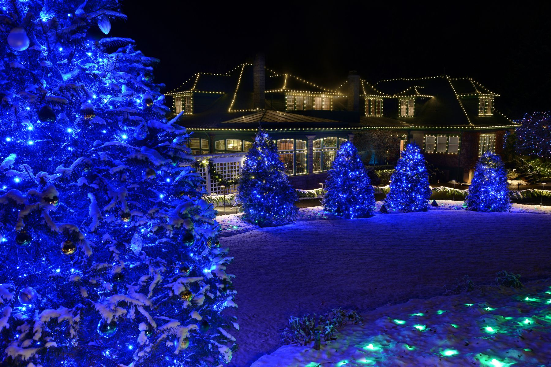 Victoria Canada Visiting At Christmas With Images Christmas Tours