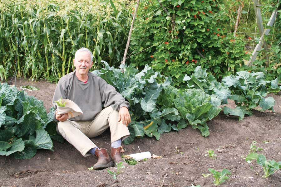 Homemade Organic Fertilizer Recipe Food Gardens 400 x 300