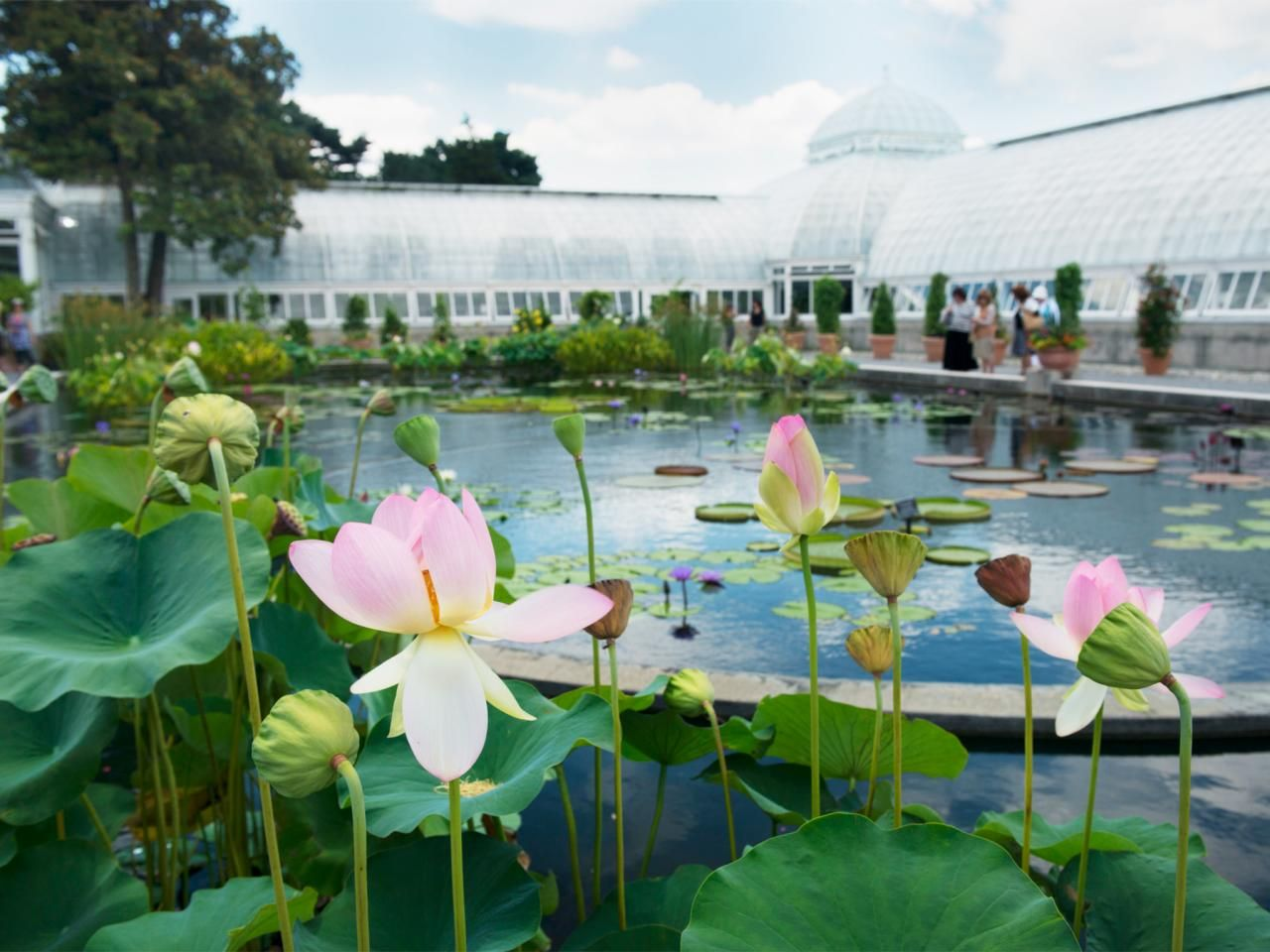 Best Botanical Gardens In The US : Our Picks For The Best Botancial Gardens