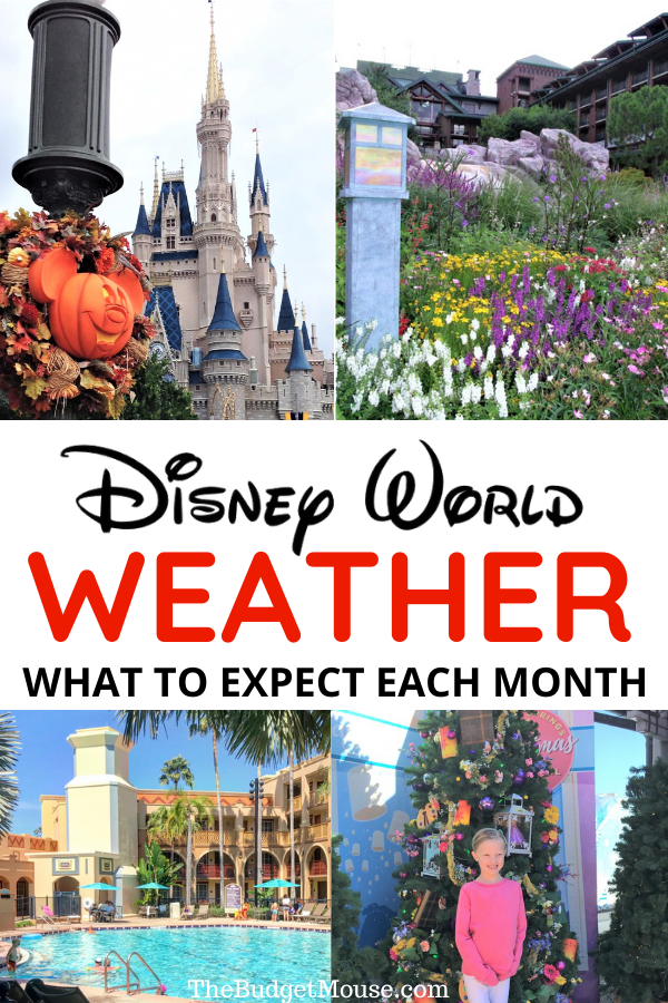disney world weather what to expect each month the budget mouse in 2020 world weather disney world vacation disney world tips and tricks pinterest