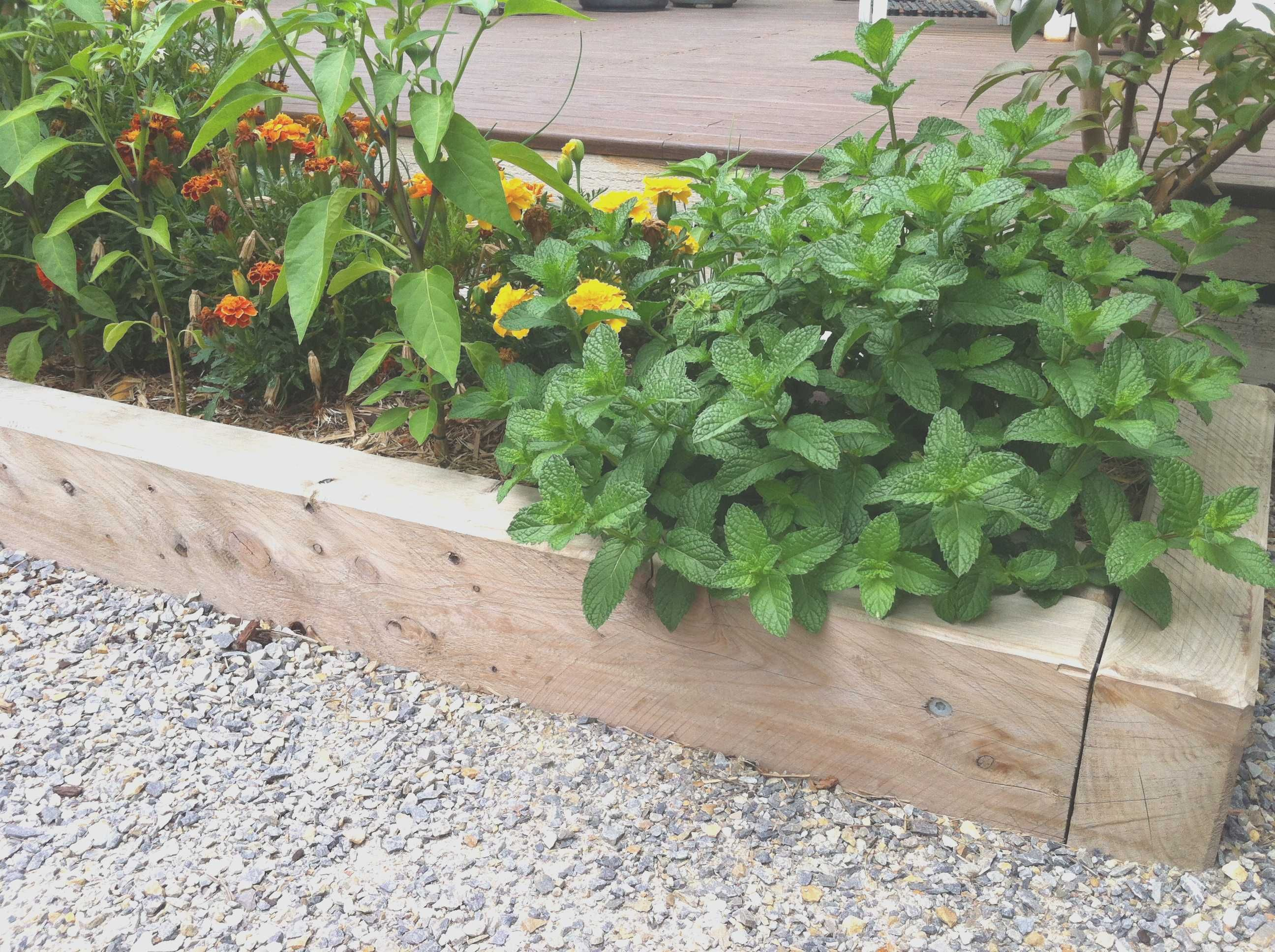 Inspirational Vegetable Garden Plans for Small Spaces | Garden ...
