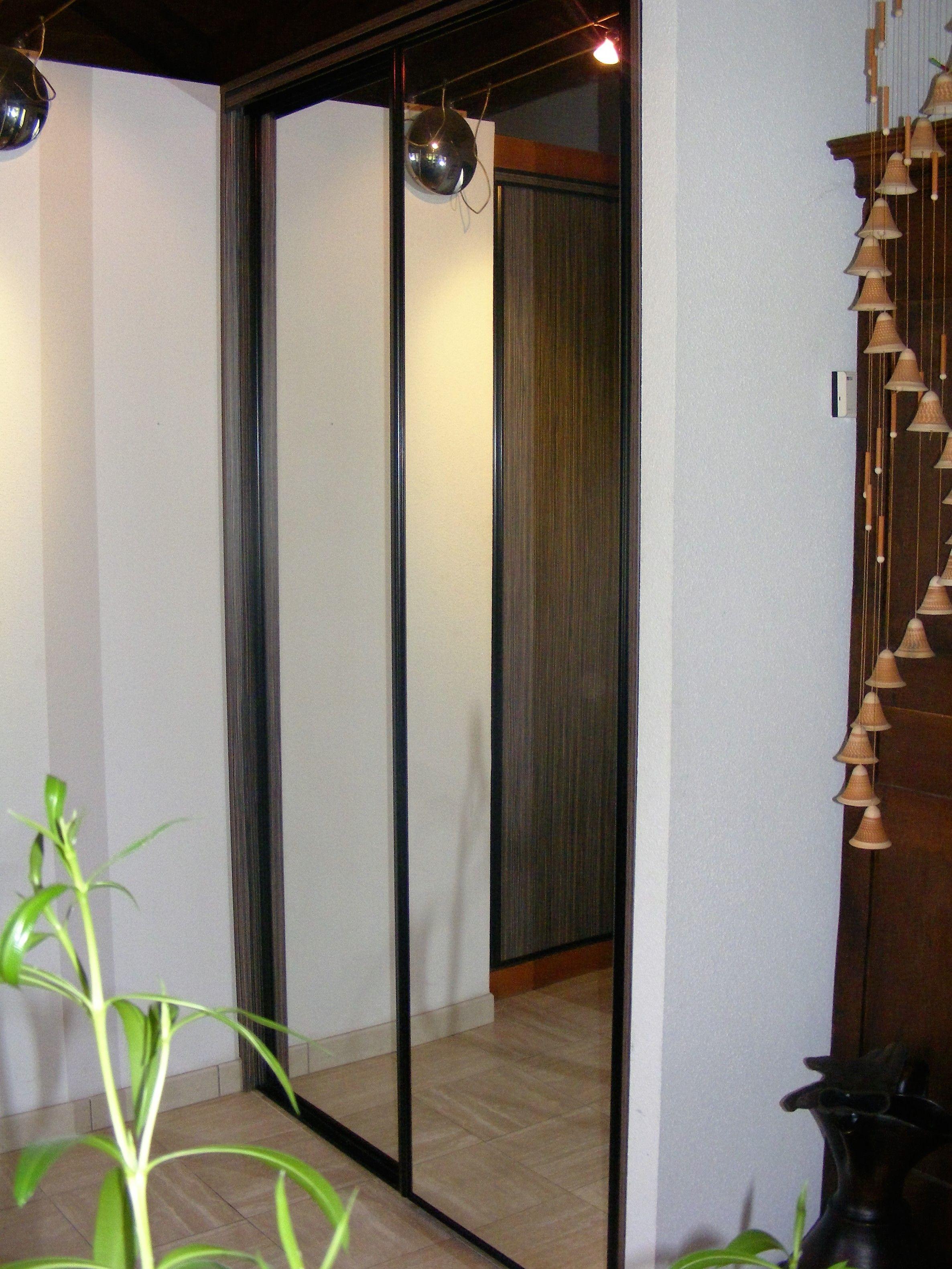 Portes De Placard Coulissantes Avec Miroirs Et Profils Alu Laques Noir Placard Coulissant Porte Placard Porte Placard Coulissante
