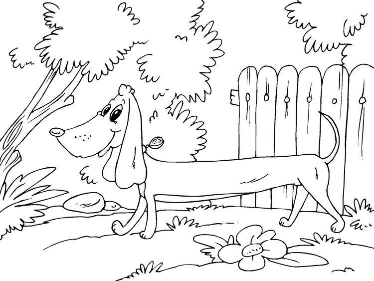 Dibujo para colorear perro raposero. | Dachshund love | Pinterest ...