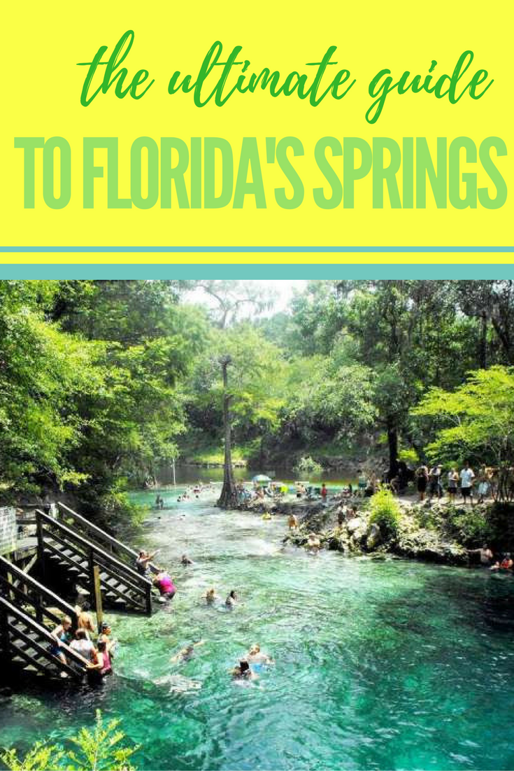 Spring Hop Across Central Florida Visit Florida Florida Springs Florida Travel
