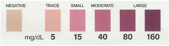 Ketone Test Strips  Urine Test Strips Color Chart  Insulin