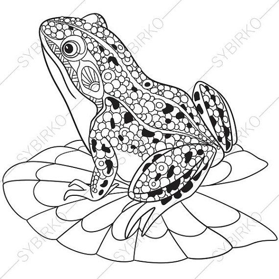 Coloring pages for adults. Frog. Toad. Adult coloring pages ...