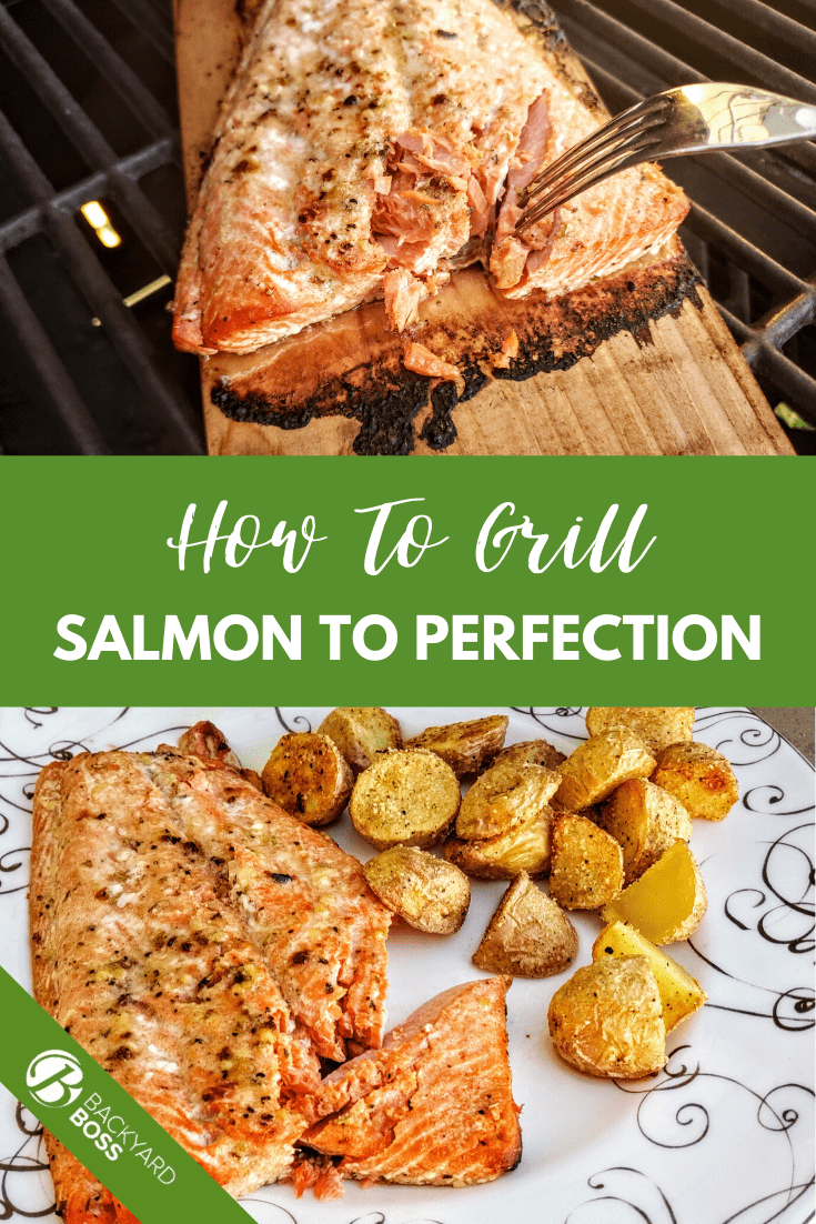 Easy Grilled Salmon Recipe Bbq Spot Recipe Grilled Salmon Grilling Cooking Salmon