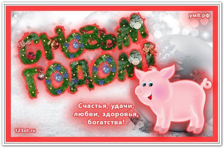 Новые живые открытки, картинки с новым годом свиньи 2019 ...