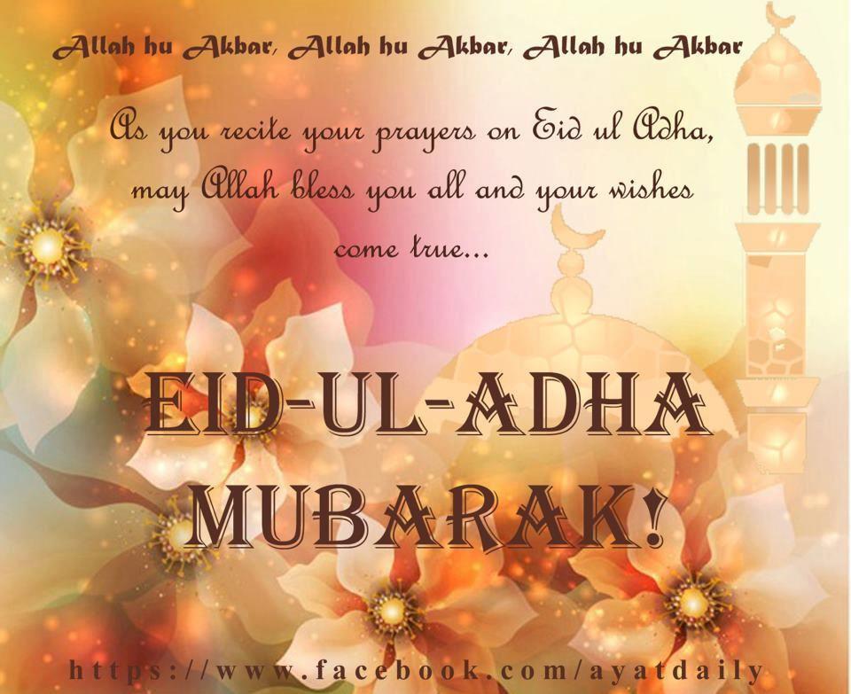 Eid al adha mubarak eid al adha pinterest eid eid al adha mubarak m4hsunfo Choice Image