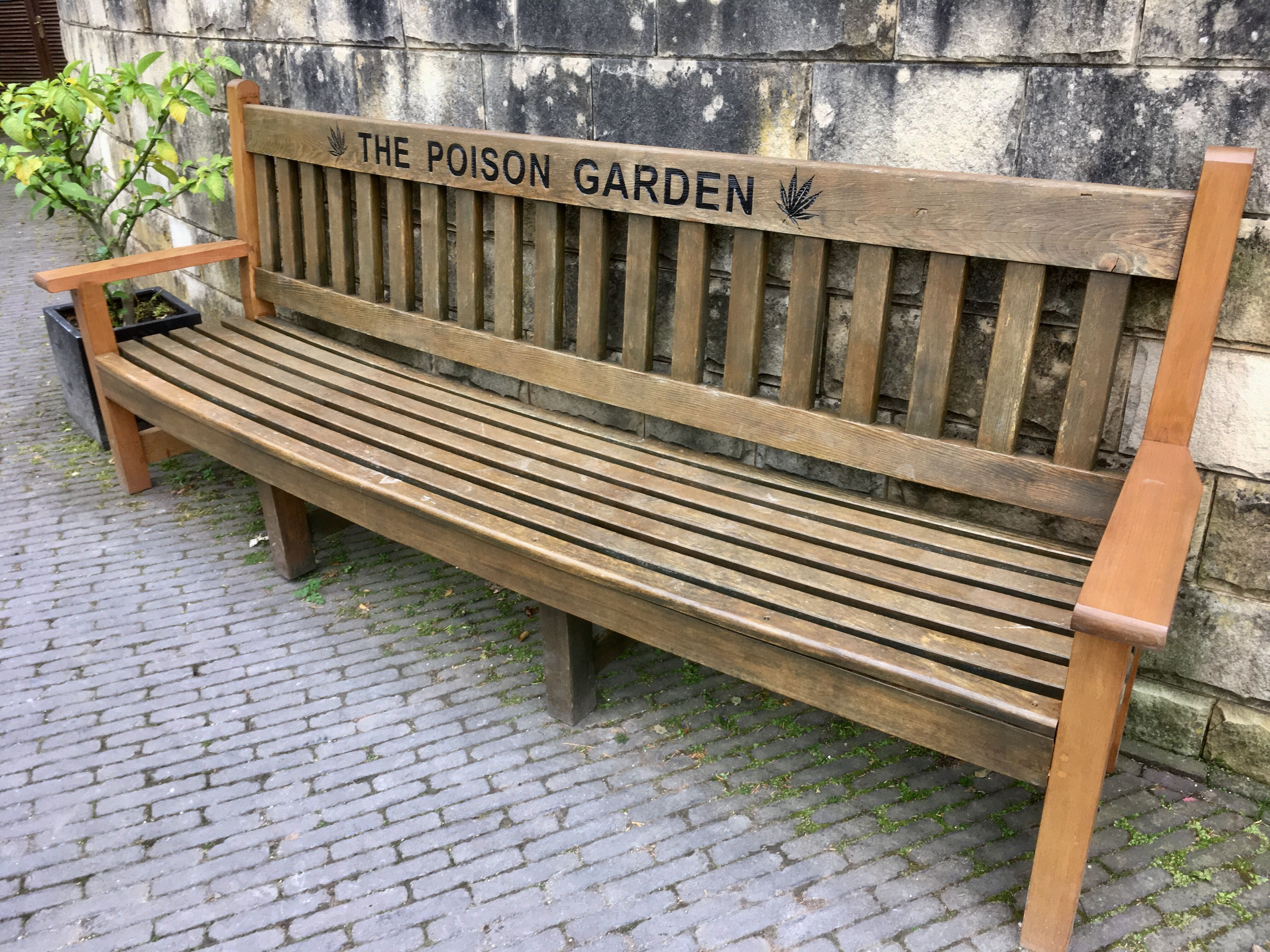 Garden bench in the poison garden at Alnwick Castle, Northumberland ...