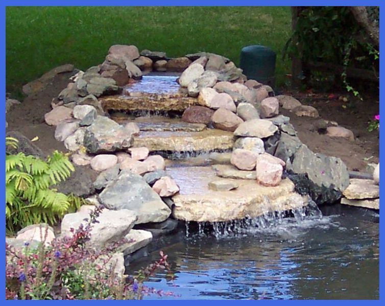 Build A Backyard Pond And Waterfall Best Floating Plants 400 x 300