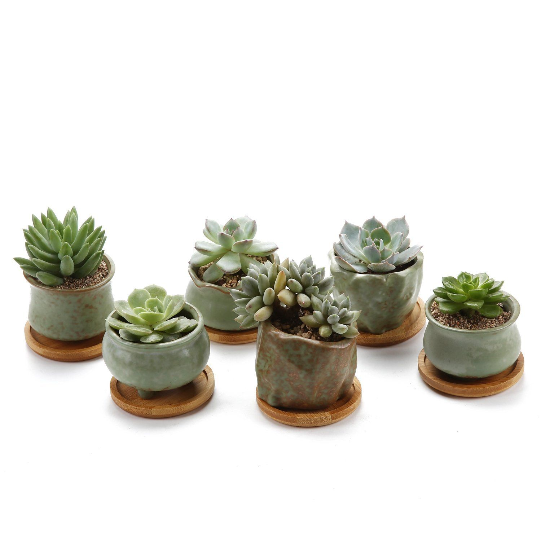 19 93 Rachel S Choice 3 Spring Serial No 2 Tripod Sucuulent Cactus Plant Pots Flower Pots P Succulent Pots Ceramic Succulent Planter Ceramic Succulent Pots