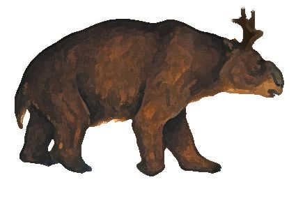 Gunni- Australian cryptid: a big wombat-like creature that had antlers. Three supposed specimens were found but they are thought to be hoaxes.