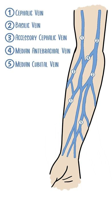 10 IV Insertion Tips for Nurses | Health And Willness