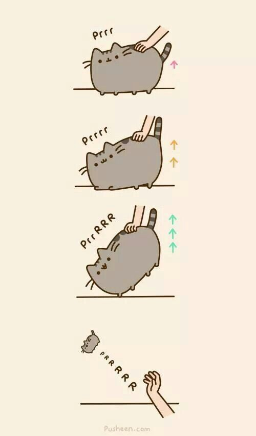 37864b41db2d6bda25d14ad16e516681 pusheen cat pusheen cat pinterest pusheen cat, pusheen and memes
