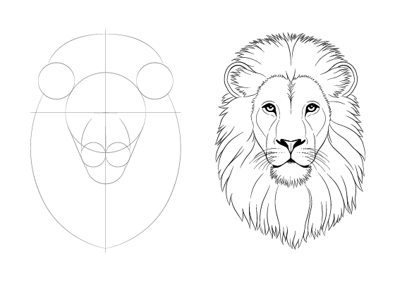 Easy Drawing Tutorials For Beginner Intermediate Artists Drawing Tutorial Easy Drawing Tutorials For Beginners Lion Drawing Simple