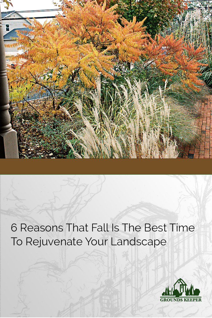 If you think you've missed the boat on landscaping because the warmer weather is winding down, think again. Here are some great reasons to spruce up your landscaping this fall.