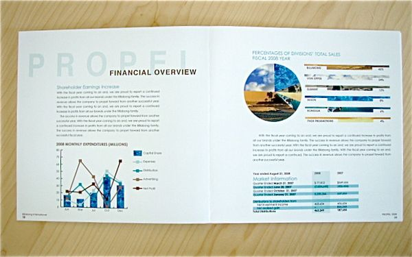 pie chart with photo background PFAR Pinterest Annual - company annual report sample