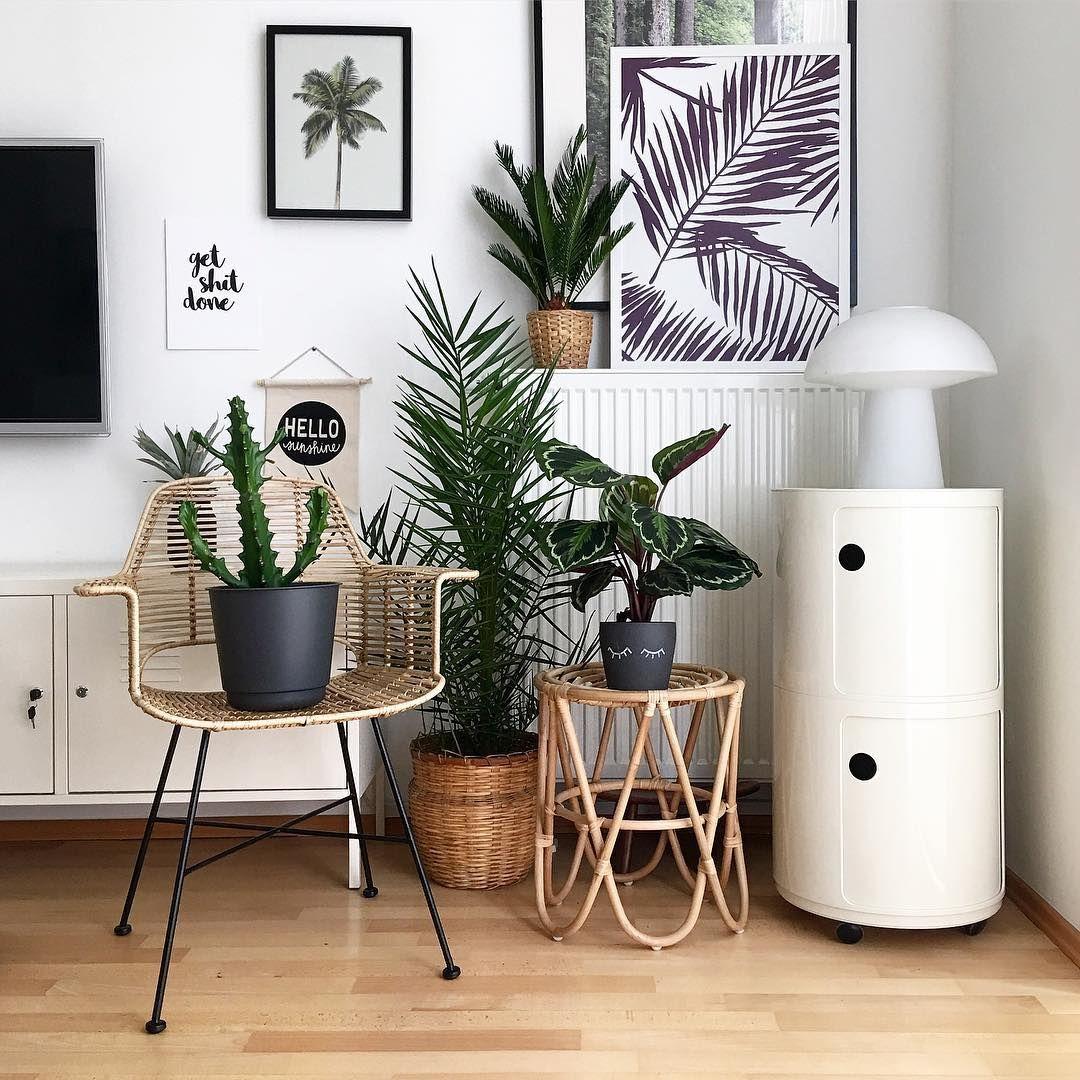 Pflanzen Deko im Wohnzimmer Living with Plants in 8