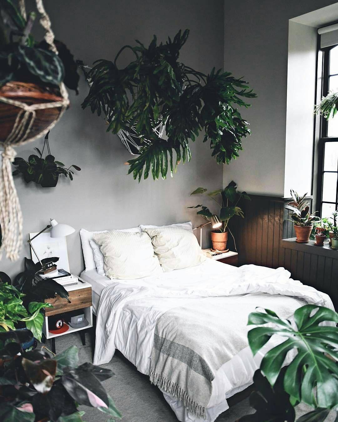 Deco Jungle Chambre Adulte visites | deco chambre, home, deco et d�co maison