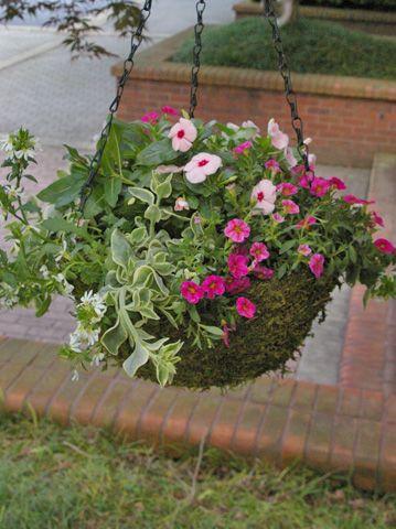 Diy Mothers Day Hanging Basket Gardening Baskets