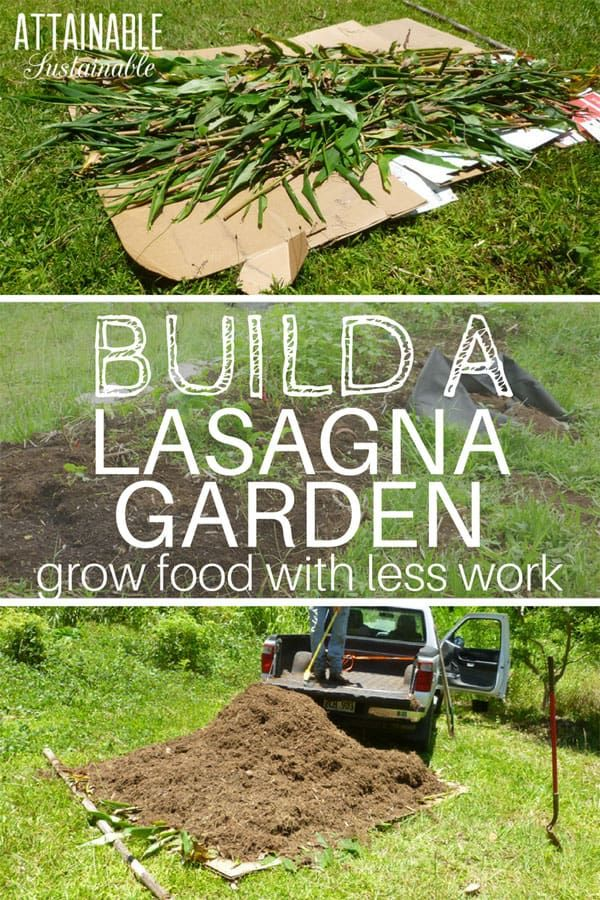 Lasagna gardening is a great (and easy) way to get started with no ...