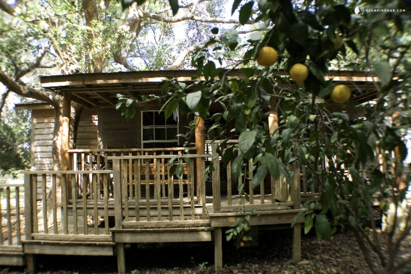 Charmant Forested Wood Cabin Near Ocala National Forest In Central Florida