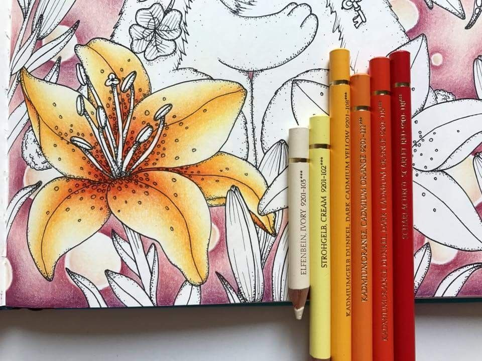 To Go With The Printable For Stargazer Lilies Correspond Colors