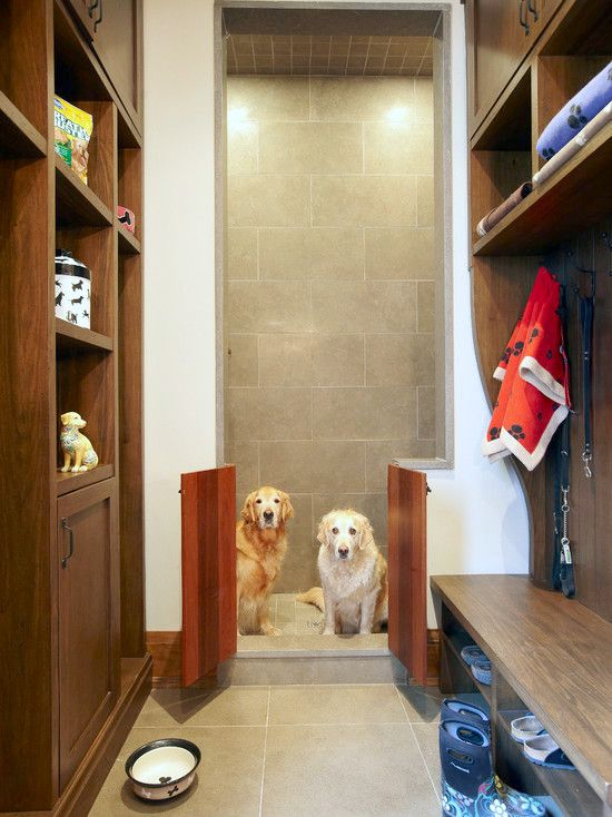 Pet Friendly Pets Dog Rooms Dog Washing Station