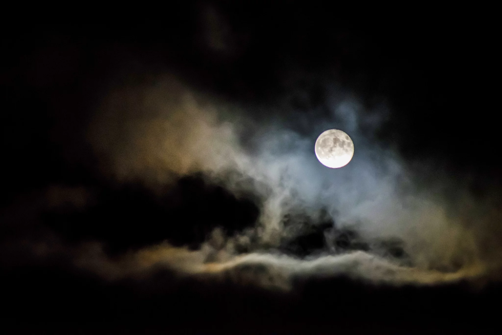 There Will Be A Blue Moon On Halloween This Year So Get Ready For An Extraspooky Night In 2020 Photographing The Moon Full Moon Black Magick