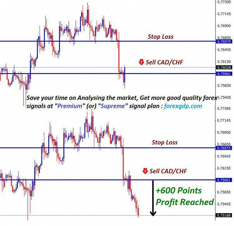 Save Your Time On Analysing The Forex Market Get Help From Forex