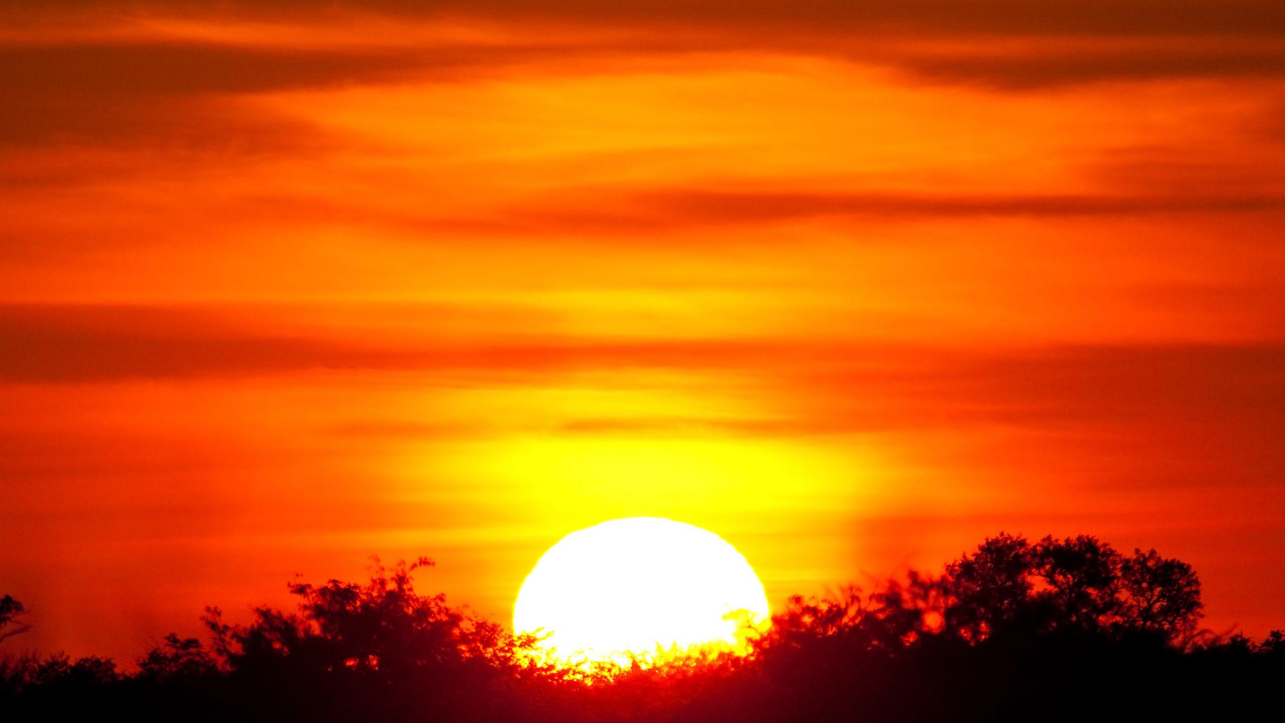 Wallpapers African Sunset Sunset Wallpaper Sunset