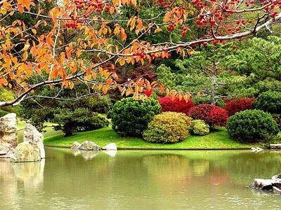 Missouri Botanical Garden, St. Louis, MIssouri | Travel in U.S. ...