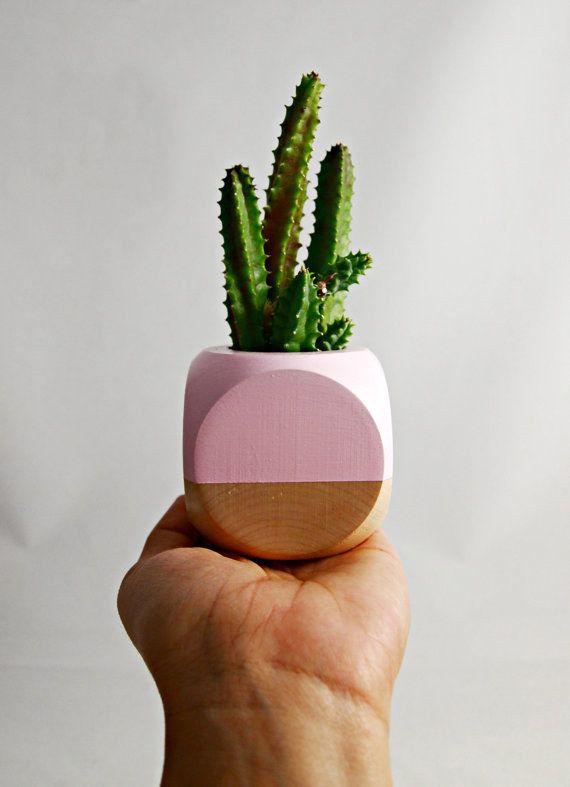 A Tiny Little Plant Pot That You Could Put A Tiny Little Cactus In Plants Cactus Planter Succulents