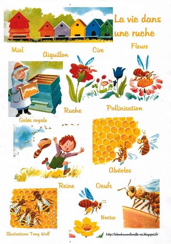 Le bonheur en famille petite fiche sur les abeilles for Abeilles dans la maison