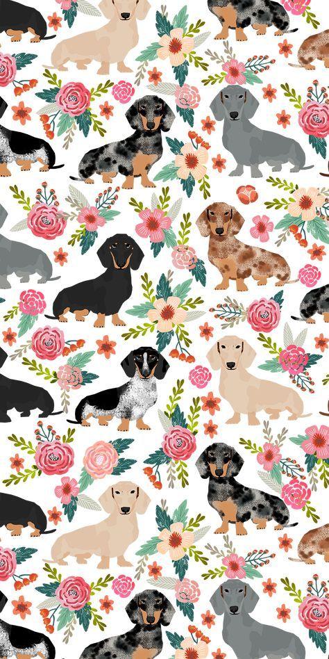 Photo of 54+ Trendy Hunde Wallpaper iPhone Hintergründe Tiere