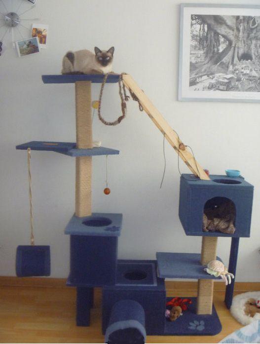 Centro De Entretenimiento Para Gatos Catgym Centro De Entretenimiento Decoracion De Exteriores Gatos