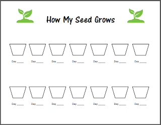 Living and Learning at Home: Lets Celebrate Spring! SEEDS