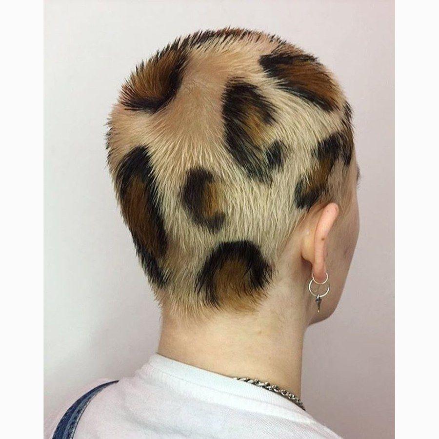 The 26 Wildest Dye Jobs That Will Inspire Your Next Hair Transformation Leopard Print Hair Leopard Hair Crazy Hair