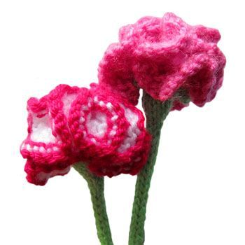 Free Flower Knitting Patterns Pinterest Knit Patterns Carnation