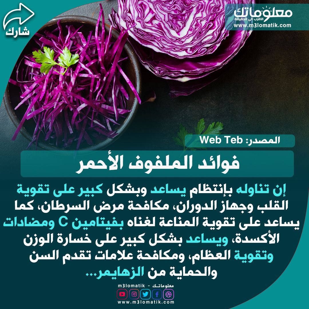 فوائد الملفوف الأحمر Vegetables Cabbage Food
